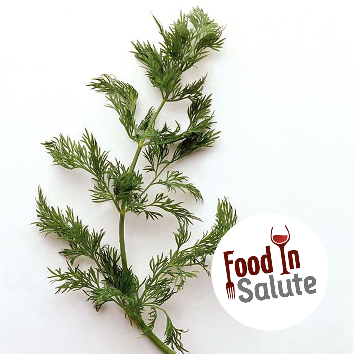 FOOD IN SALUTE - FINOCCHIETTO SELVATICO